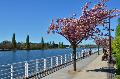 balades riviere Allier