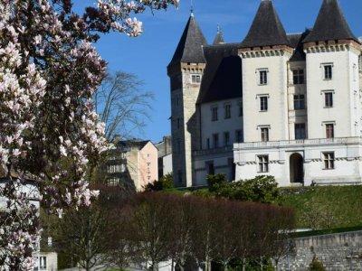 National Museum and the Château de Pau