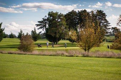 Golf Public du Nivernais Golfeurs Green Putting