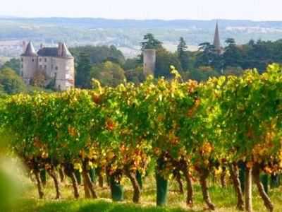 Les chais des Vignobles de Buzet
