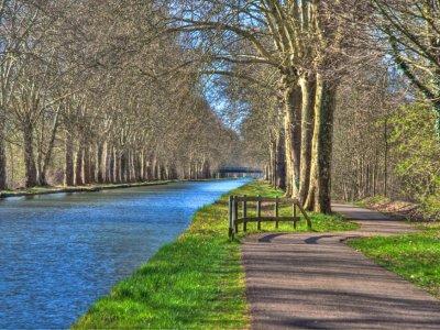Sillonner les belles pistes cyclables d'Alsace :