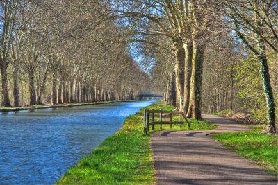 canal rhone rhin peche carpe de nuit illkirch bas rhin 1