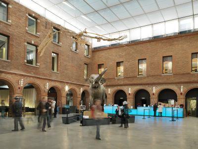 Visitez les nombreux musées de Toulouse