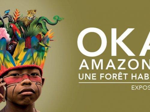 Exposition Oka Amazonie, une forêt habitée