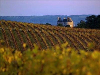 Vin et Gastronomie du Lot et Garonne