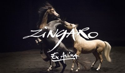 Zingaro - Ex Anima