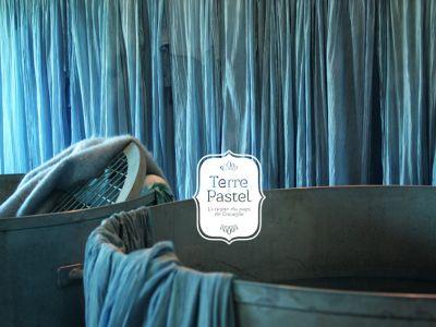 Terre de Pastel : Muséum du Pastel