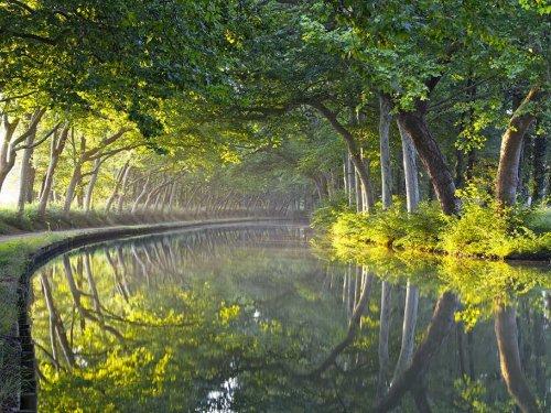 Croisière romantique sur le Canal du Midi