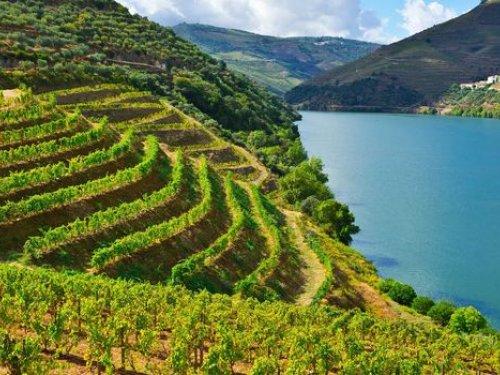 Exposition Douro à la Cité du Vin