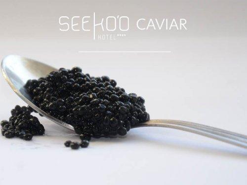 Seeko'o Caviar à 245€