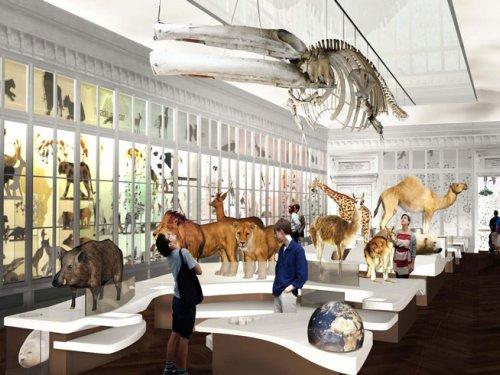museum bordeaux 1